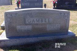 Lenous <I>Dyer</I> Gamble