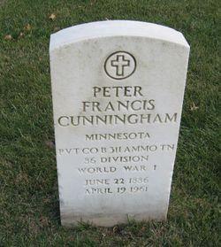 Peter Francis Cunningham