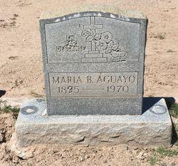 Maria B Aguayo