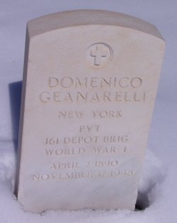 Domenico Geanarelli