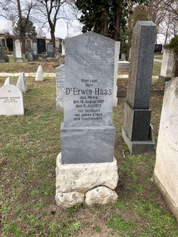 Dr Erwin Haas