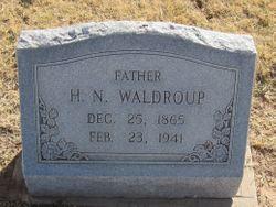 Henry Nelson Waldroup