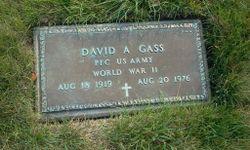 David A Gass