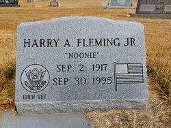 Harry Albert Fleming, Jr