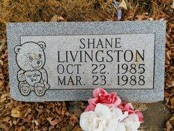 Shane Livingston
