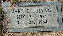 Lora Jane <I>Coffman</I> Pellam