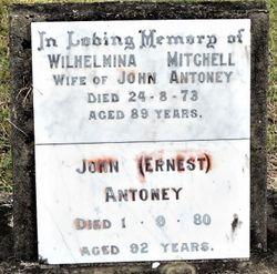 """Wilhelmina Mithcell """"Minnie"""" <I>Hay</I> Antoney"""