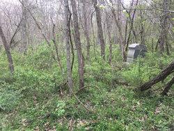 Wilt Cemetery
