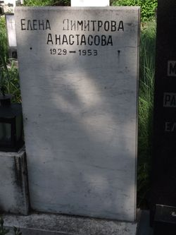 Elena Dimitrova Anastasova