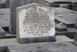 Lucy E. Taylor