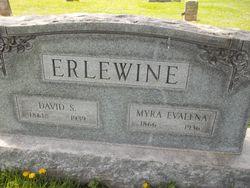 David S Erlewine