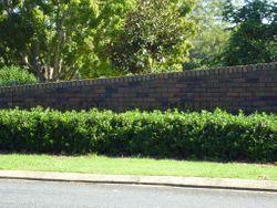 Coffs Harbour Lawn Cemetery
