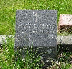 Mary E. Barry