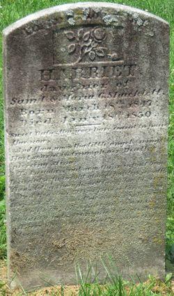 Harriet Shacklett