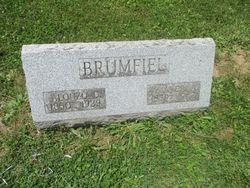 Amanda Alice <I>Handley</I> Brumfiel
