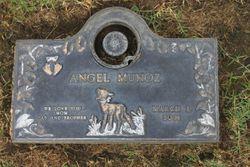 Angel Munoz