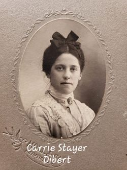 Carrie Jane <I>Stayer</I> Dibert
