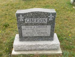 David A. Giberson