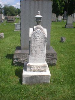 Mary Ann Fahl