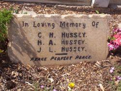 J. L. Hussey