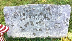 David Robert Coggeshall
