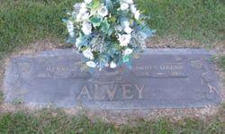 Agnes Orene <I>Wilkins</I> Alvey