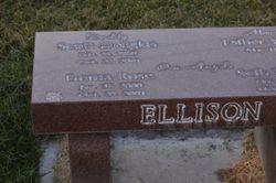 Scott Douglas Ellison