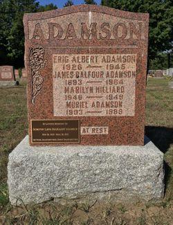 James Balfour Adamson