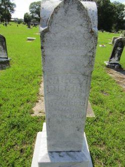 Rev Wiley C. Pipkin