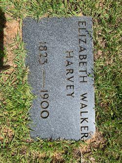 Elizabeth Ann <I>Walker</I> Harvey