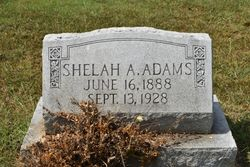 Shelah Ann Adams