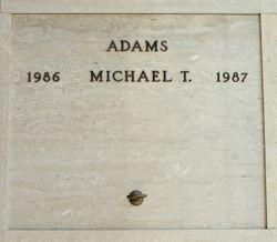 Michael T Adams