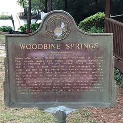Capt George Woodbine