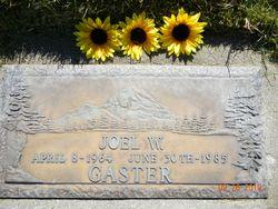 Joel Whitney Gaster