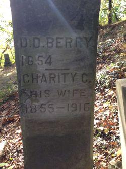 David D. Berry