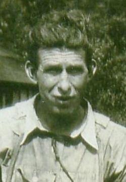 Walter Dewitt
