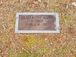 Elizabeth Anne <I>Bishop</I> Mitchell