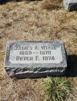 Peter F Winne