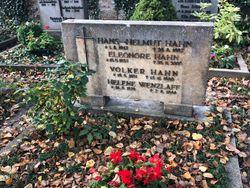 Hans-Helmut Hahn