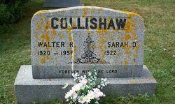 Walter R Collishaw