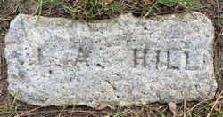 Lee Anna Hill