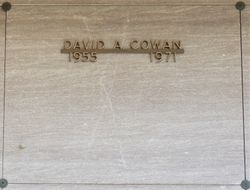 David Austin Cowan
