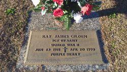 Ray James Gilden