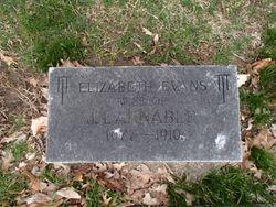 Elizabeth <I>Evans</I> Annable