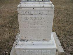 Nelson A Perkins