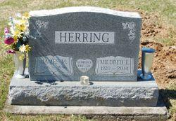 James M. Herring