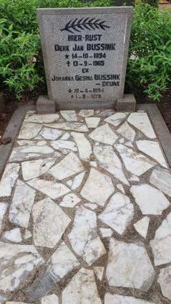Derk Jan Bussink