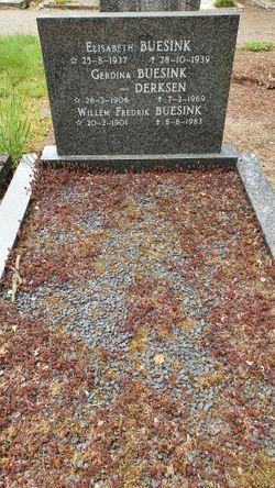 Willem Fredrik Buesink