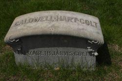 Elizabeth Jarvis Colt