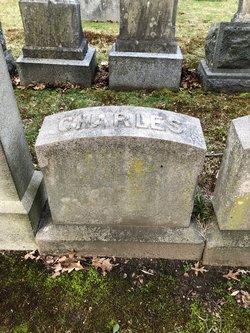Charles Alexander Hale